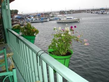 Plomari yat limanı