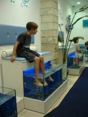 Retymnon' da Dr. balıklar
