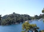 Portofino koyu