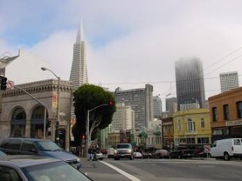 SF merkezi