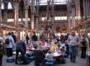 Natural Museum, Oxford