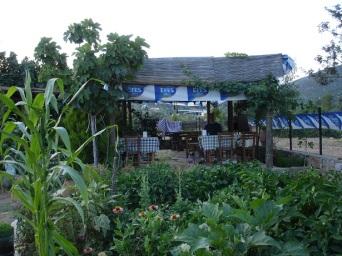 Çiftlikköy'de lokanta