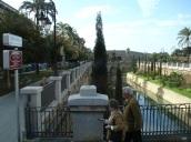 Katedral bahçesi, Palma
