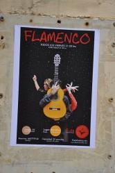 Flamenco her yerde