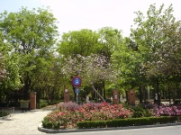 Maria Luisa Parkı