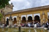 Cordoba Katedrali bahçesi