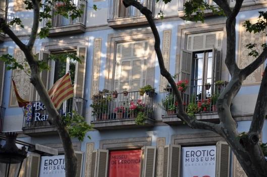 Müze ve Catalunya bayrağı