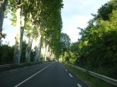 Montpelier yolu