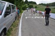 Aracımız ve asfalt yazıları
