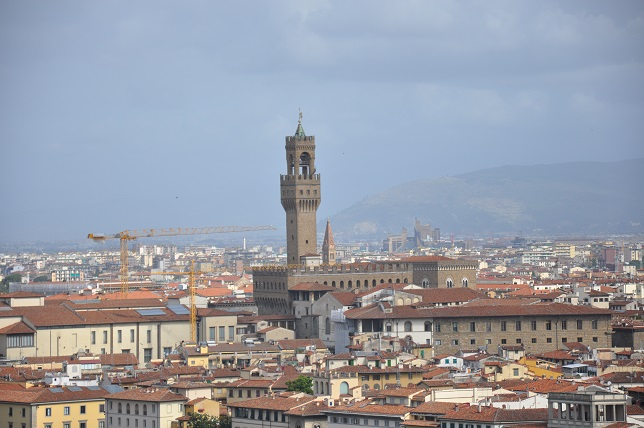 Eski sarayın kulesi