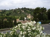 Floransa tabiatı