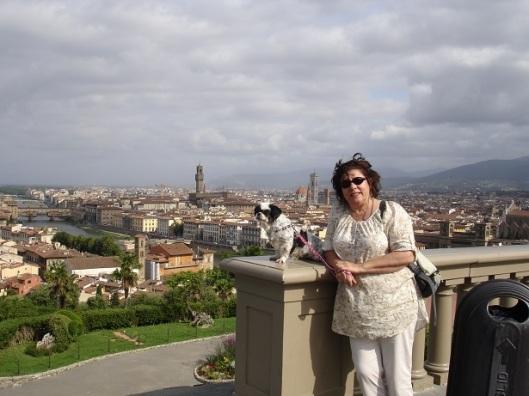 Floransa'ya tepeden bakış