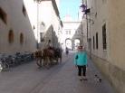 Salzburg Hatırası