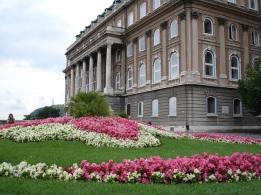 Buda Sarayı'ndan bir görüntü
