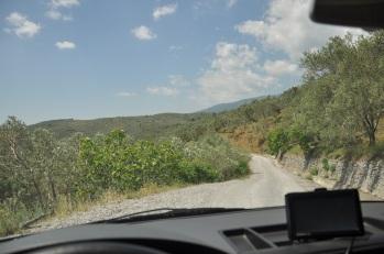 Milli Park yolu