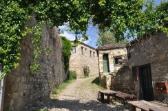 Adatepe köy yolu