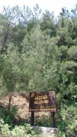 Kaz Dağı Milli Parkı