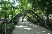Erdek merkez botanik yolu