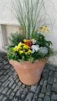 Kale ve çiçekler