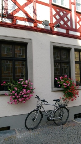 Würzburg ve bisiklet