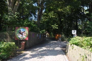 Sarayın çevresi orman