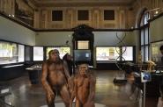 Homo Saphiens