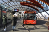 Centraal Station arkasındaki otobüs durakları