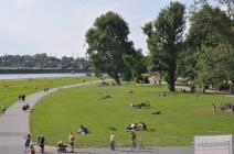 Elbe nehri kıyılarında yeşil alanlar