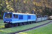 Büyük park içinde işleyen tren